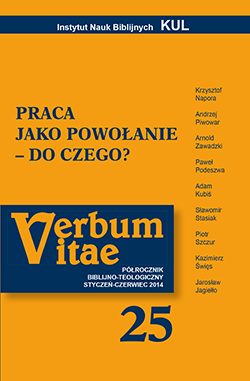 vv25_cover